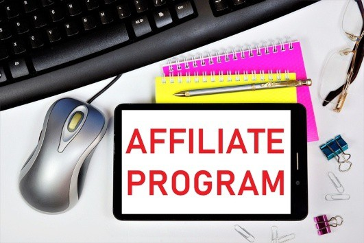 choose affiliate marketing programs that make sense for your online business